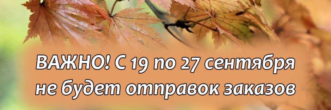 СКИДКИ_каникулы и т.п.